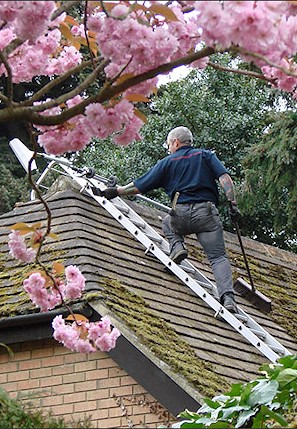 Our staff cleaning the moss from a roof in Winnall near Winchester